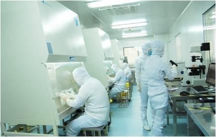 实验室-BioVector NTCC中国质粒载体菌种细胞基因