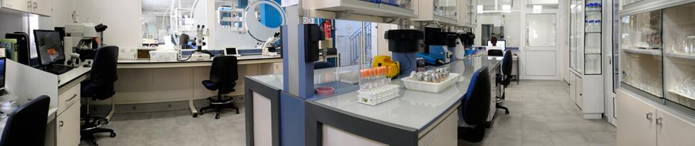 Lab BioVector NTCC Inc.